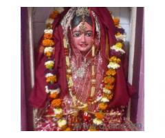 kala jadu specialist baba ji__09915786526 In Chennai